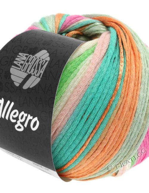 Allegro 24
