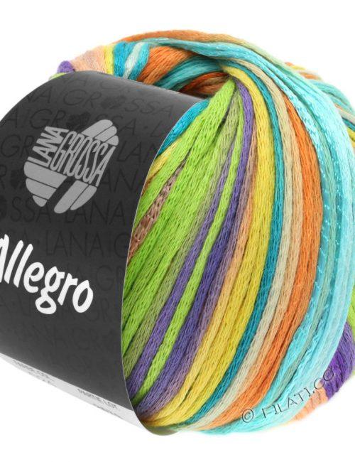 Allegro 25