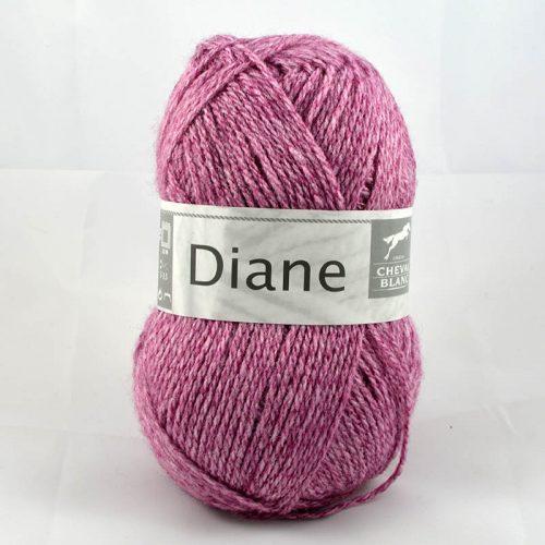 Diane 31 Slez
