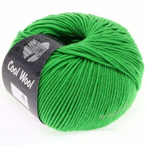 Cool Wool 2000 zelené jablko 504