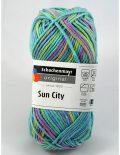 Sun city 1081