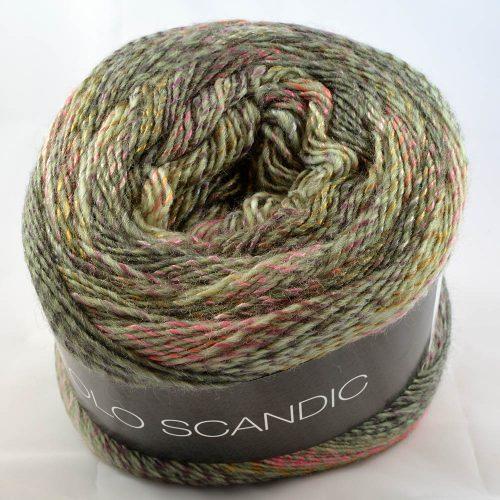 Gomitolo Scandic 503